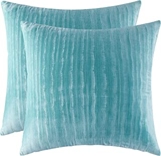 Ao Lei Pack of 2, Cozy European Throw Pillow Covers Cases for Decorative Couch Sofa Bedroom Car Chair, Luxury and Durability Dutch Velvet Very Soft,20x20 inch,Turquoise