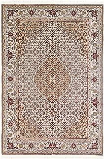 eCarpet Gallery Hand-Knotted   Area Rug for Living Room, Bedroom   Tabriz Haj Jalili Persian Ivory Rug 4'1