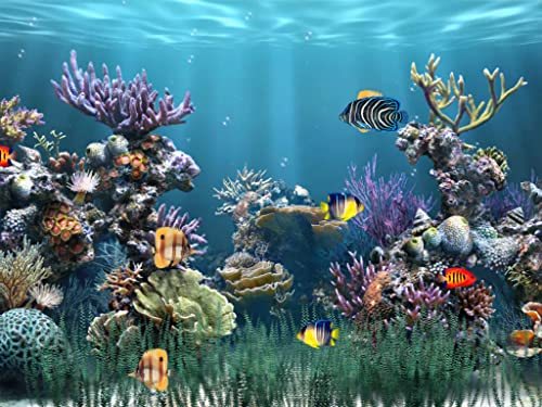 Aquarium 1 [Download]