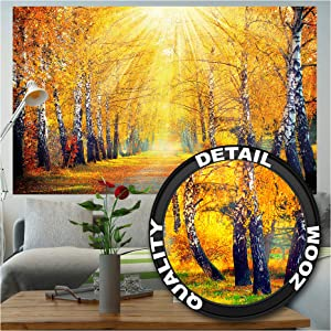 Photo Wallpaper – Golden Autumn – Picture Decoration Birch Forest Nature Landscape Tree Avenue Park Recreation Yellow Treetops Image Decor Wall Mural (82.7x55.1in - 210x140cm)