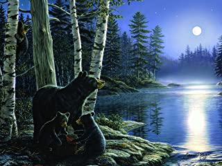 River's Edge Moonlight Bears by James Meager LED Lighted Gallery Wrapped Canvas Art, 16