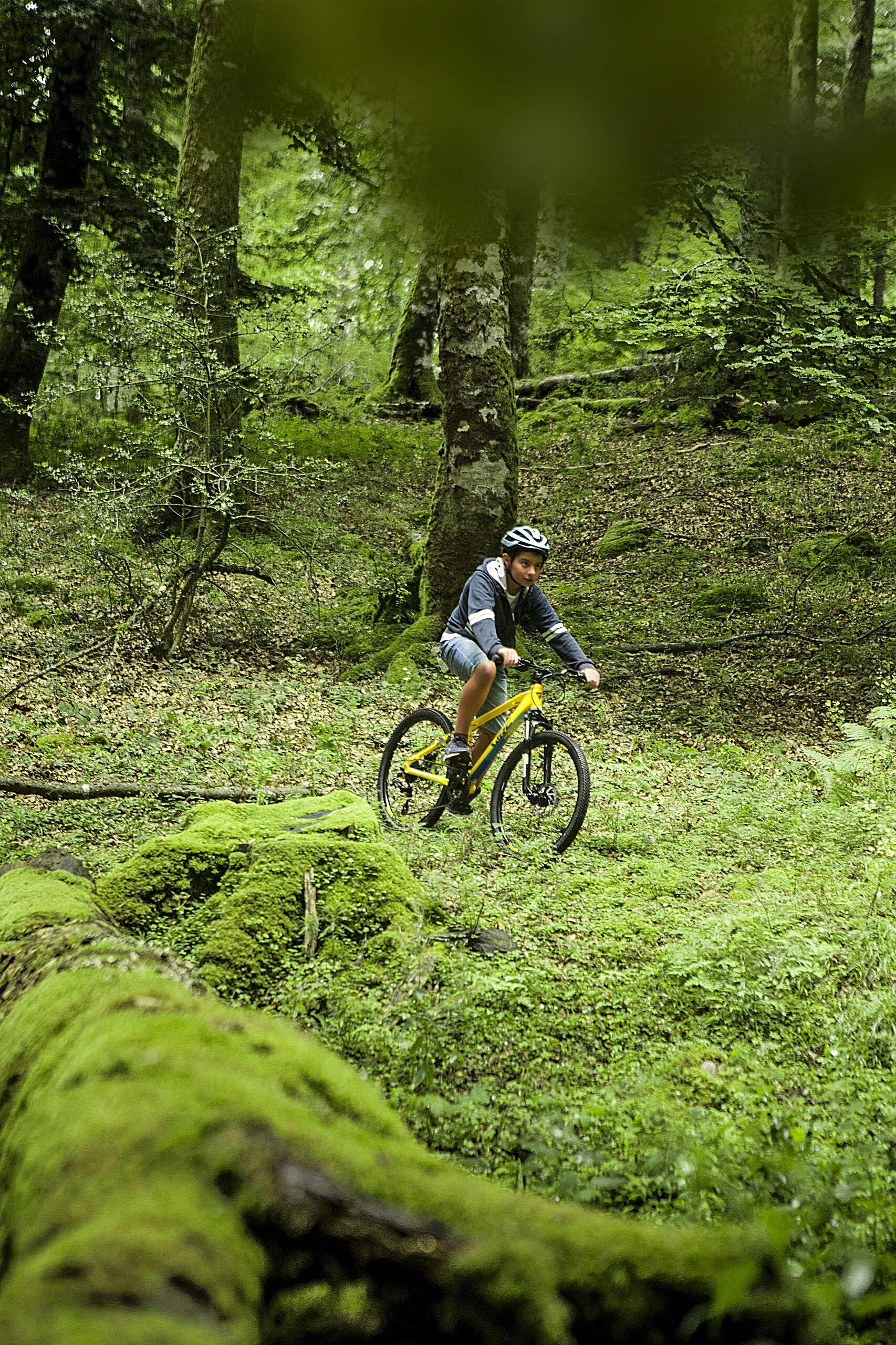 Listing Padre WRC Pro Discs (AMARIILO): Amazon.es: Deportes y aire ...