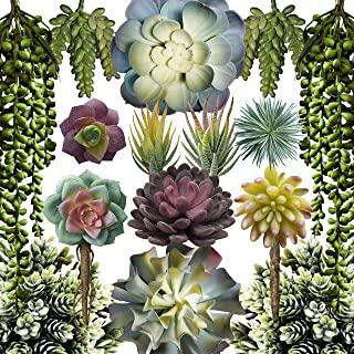 caqpo Artificial Succulents - 15 Pack - Premium Unpotted Succulent Plants Artificial - Realistic Textured Succulents - Fak...