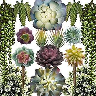 Caqpo Artificial Succulent Plants - 15 Pack - Premium Unpotted Face Succulent Plants - Realistic Textured Succulents - Fake Succulent Plants for DIY - Faux Cactus Plant Bulk - Feaux Succulent Plants