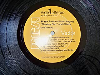 45vinylrecord Elvis Singing Flamingo Star LP (12