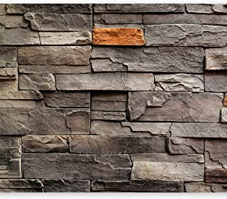 comprar comparacion murando Fotomurales 400x280 cm XXL Papel pintado tejido no tejido Decoración de Pared decorativos Murales moderna Diseno F...