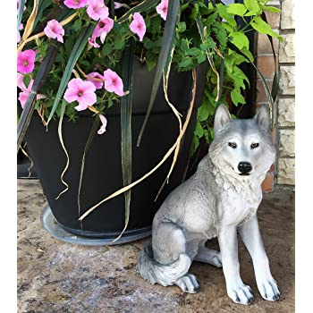 Majestic Mythical Sitting Gray Alpha Wolf Statue Figurine Timberwolves Decor Wisdom of The Woodlands for Home Decorative Patio Greeter