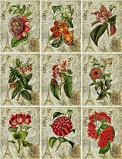 Vintage Botanical Red Flowers on French Ephemera Collage Sheet Altered Art, Card Making, Gift Tags, Scrapbook 8.5 x 11