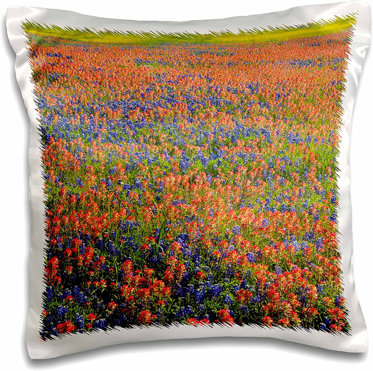 Amazon Com 3drose Blue Bonnets Indian Paintbrush Texas Hill Country Us44 Dgu0187 Darrell Gulin Pillow Case 16 X 16 Home Kitchen