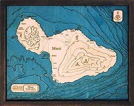 maui 3d map