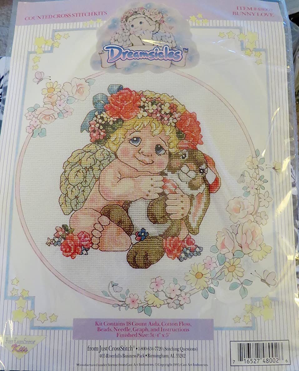Just CrossStitch Kits ~ Dreamsicles