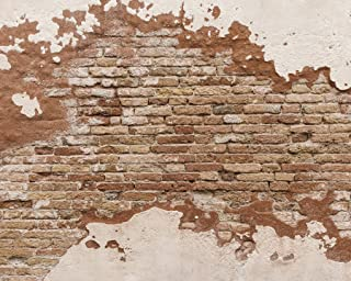 Wall Rogues WR50508 Distressed Brick Wall Mural