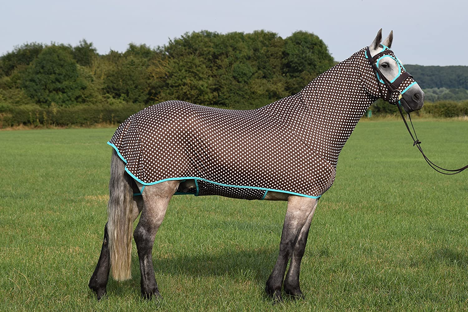 Nylon Lycra Full Horse Body Cover for Showing, Dressage and Eventing Horses  The Honsie  Brown Polka Dot Print