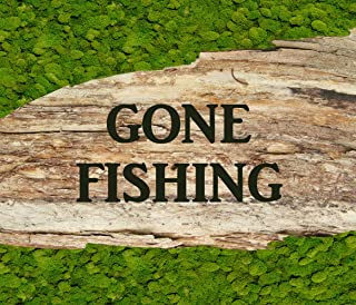 Oliver Gal 'Gone Fishing Contemporary Travel Framed Wall Moss Art for Home Décor & Office. Hand Crafted and Ready to Hang, 32x24