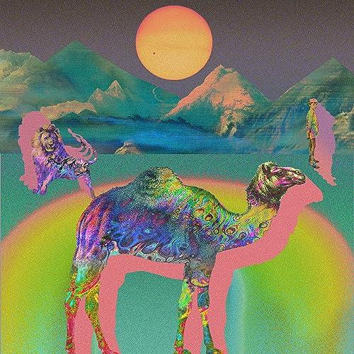 amazon camel camel