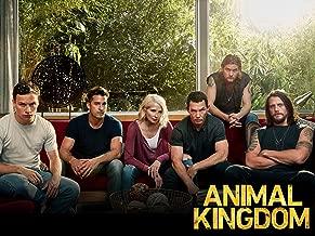 list of animal kingdom episodes