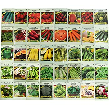 Set of 40 Assorted Vegetable & Herb Seeds 40 Varieties Create a Deluxe Garden All Seeds are Heirloom, 100% Non-GMO! by Black Duck Brand 40 Different Varieties