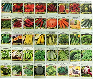 Set of 40 Assorted Vegetable & Herb Seeds 40 Varieties Create a Deluxe Garden All Seeds are Heirloom, 100% Non-GMO! by Bla...