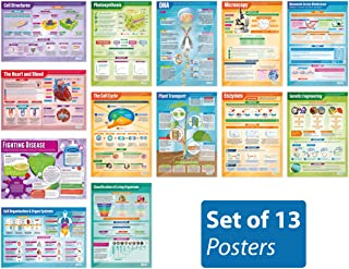 """Biology Posters - Set of 13 