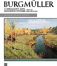 Computational Neurostimulation (ISSN Book 222)