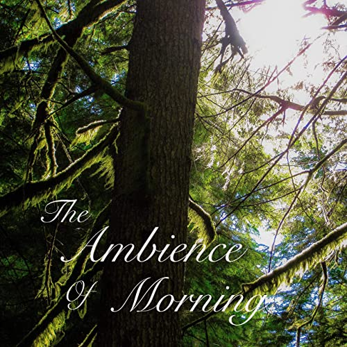 Ambience Morning Tracy N Todd product image