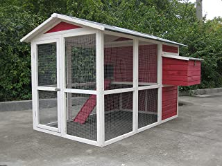 Coops & Feathers Large Chicken Coop Décor