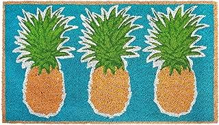 Liora Manne NTR12203504 Natura Coastal Beach Pineapples Aqua Outdoor Welcome Coir Door Mat, 18