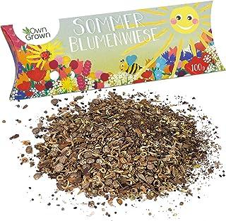 Sommer Blumenwiese von OwnGrown, Premium Sommerblumen Samen für eine bunte Blumenwiese, Sommerblumenmischung ohne Gräser, Sommer Blumen Saatgut Mischung ein- und mehrjährig, 100g Sommerblumensamen