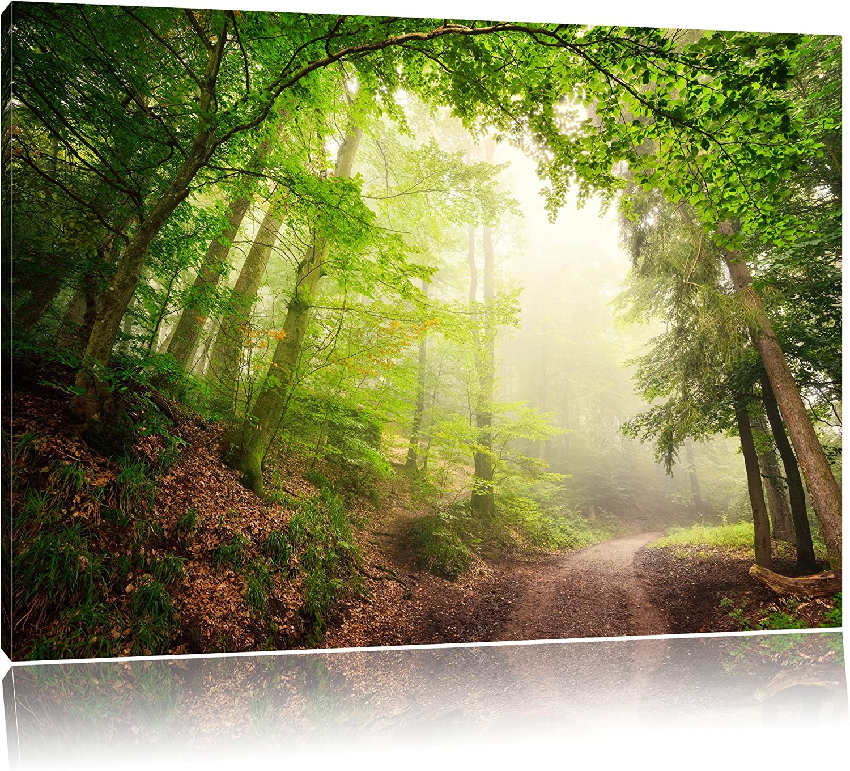 SIN-US 74 Wald mit Waldweg Bild Leinwand fertig auf Rahmen 2 Bilder a 50x60cm