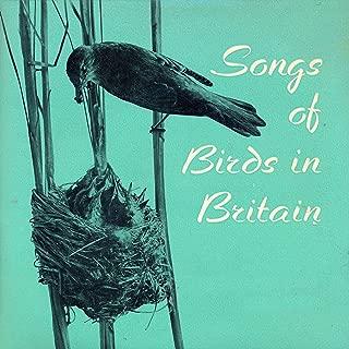 Nightingale, Sedge Warbler, Blackcap, Garden Warbler, Whitethroat, Willow Warbler, Wood Warbler, Pied Flycatcher, Starling, Chaffinch, Yellowhammer