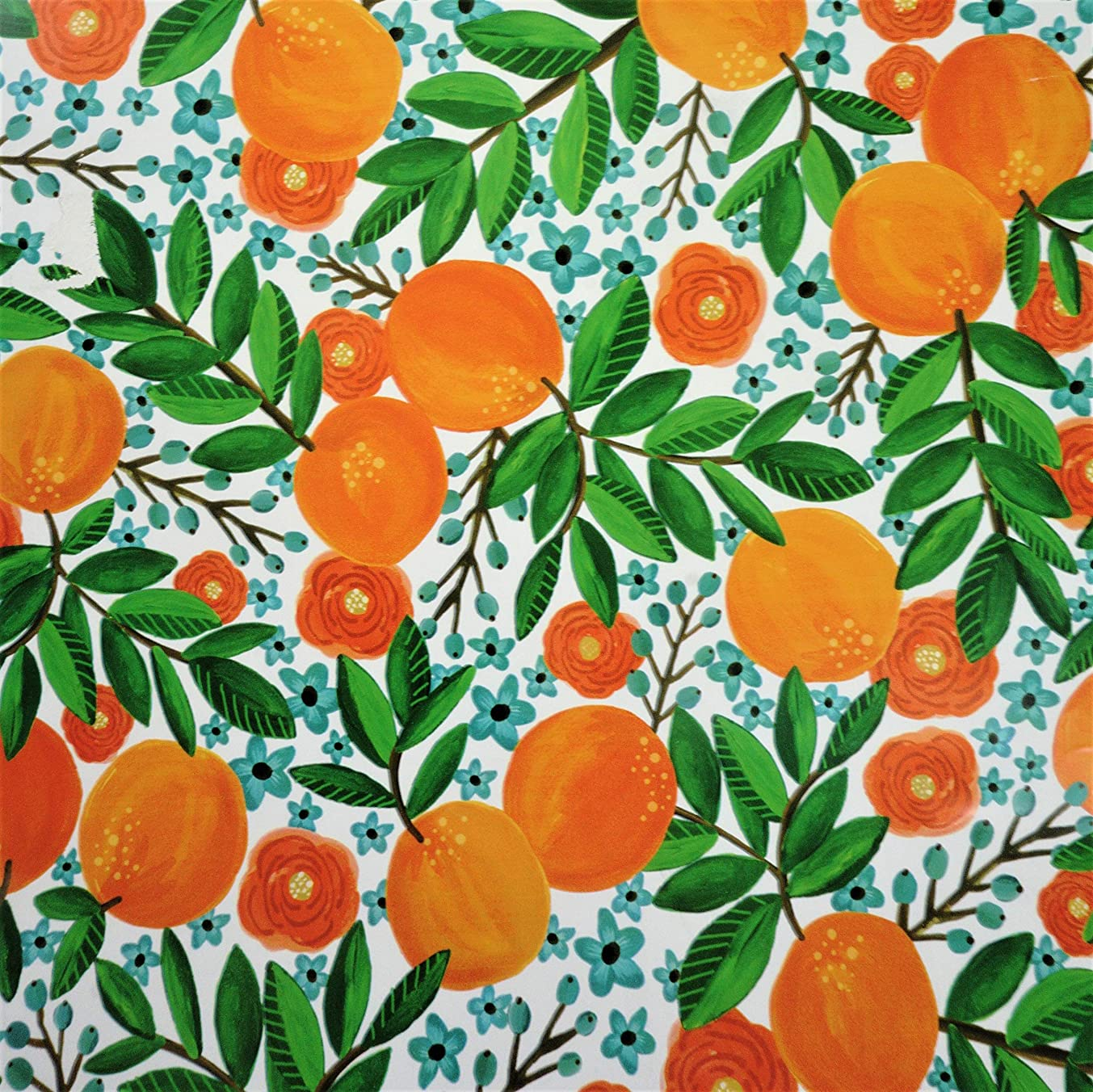 Summer Citrus Gift Wrapping Paper Flat Sheet - 24