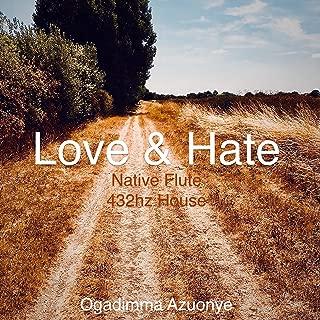 Love & Hate (Native Flute 432hz House)