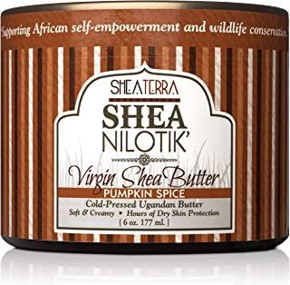 Shea Terra Organics 100% Organic Cold Pressed Virgin Shea Butter Scented with Pumpkin Seed Essential Oil and Natural Spices | Natural Daily Skin Cream – 6 oz