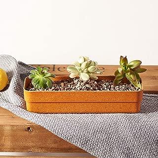 Best rectangle flower pots Reviews