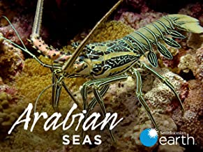Arabian Seas - Season 1