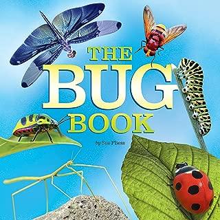easy bug catcher craft