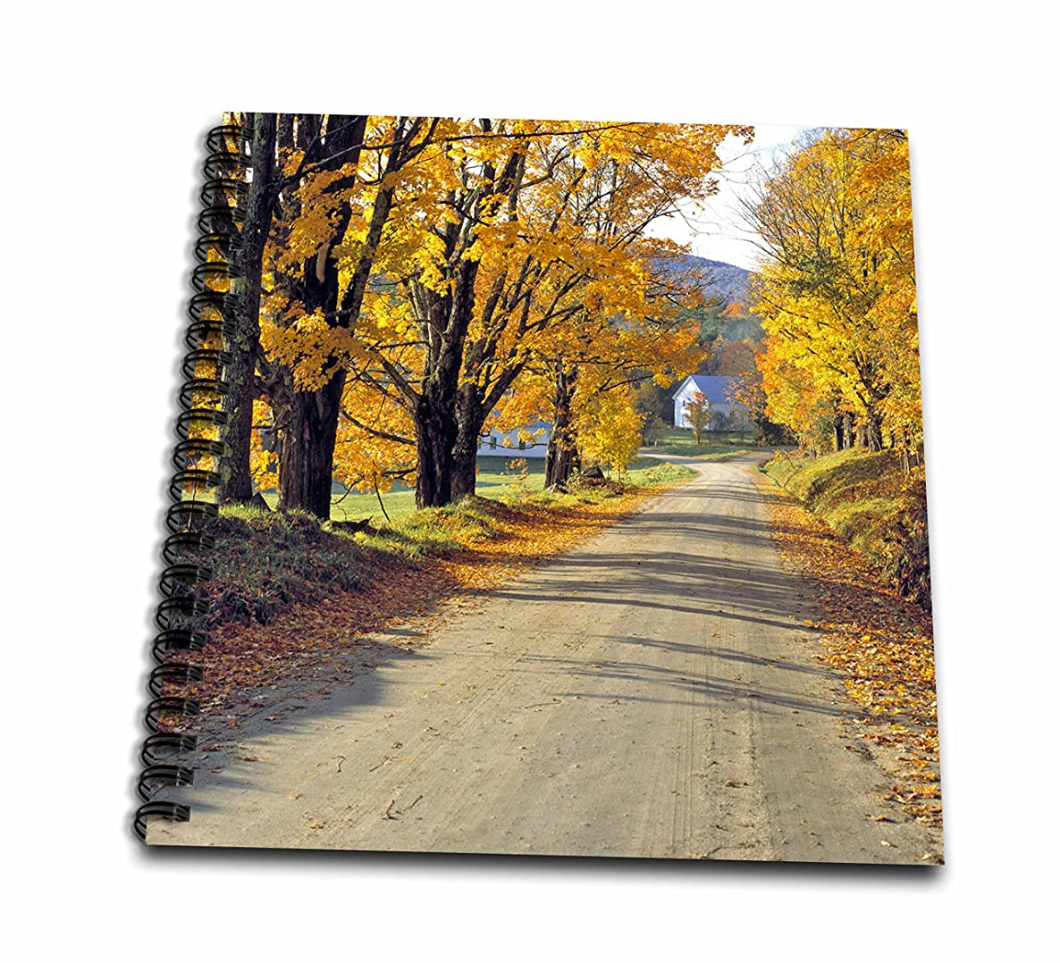 3dRose db_95045_2 USA, Vermont, Ryegate Corner. a Tree-Lined Road-US46 RER0008-Ric Ergenbright-Memory Book, 12 by 12-Inch