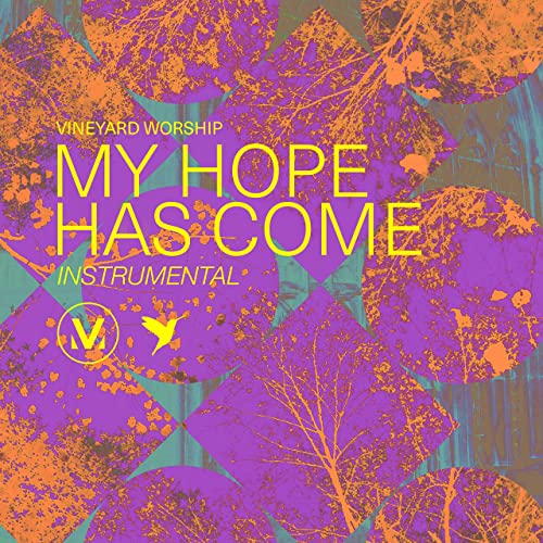 Vineyard Worship - My Hope Has Come (Instrumental) (2021)