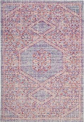 Safavieh Windsor Collection WDS311F Shabby Chic Boho Distressed Area Rug, 9' x 13', Lavender / Fuchsia