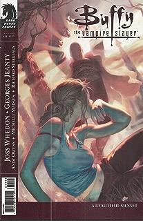 Buffy the Vampire Slayer Season 8 Number 11 Comic (Jon Foster Cover - A Beautiful Sunset)