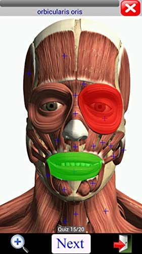 『Visual Muscles 3D』の8枚目の画像