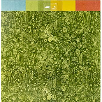 multicolor Graphic 45 Lost in Paradise 8x8 Paper Pad Papel para manualidades
