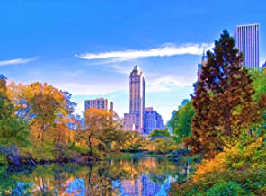Adult Jigsaw Puzzle Manhattan Central Park New York City USA 500-Pieces