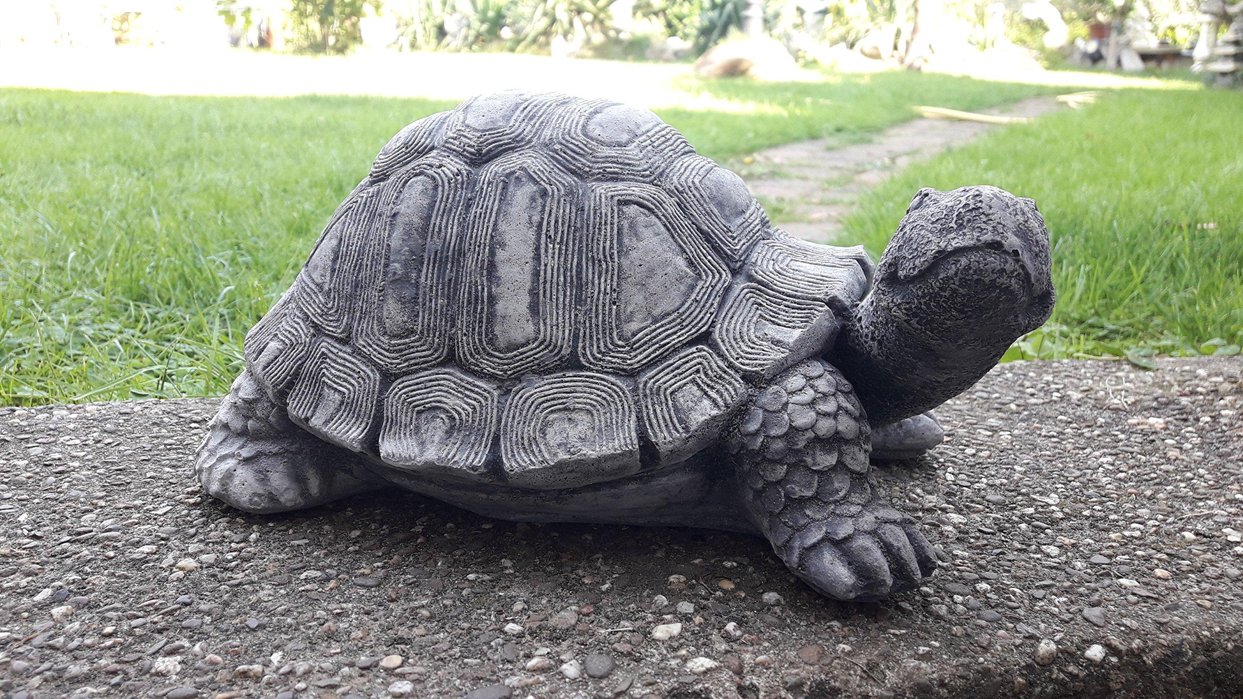 piedra Figura GRO Tortuga 28 cm Decoración Jardín Animales Animales Figura Jardín figuras nuevo: Amazon.es: Jardín