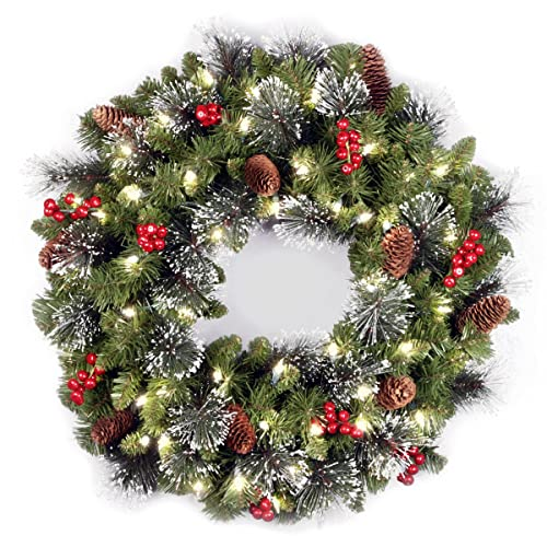 National Tree 24 Inch Crestwood Spruce Wreath with Silver Bristles, Cones,  Red Berries and - Artificial Christmas Wreaths With Lights: Amazon.com