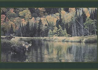 Animals in the Forest Deer Bear Racoon Nature Wallpaper Border Retro Design, Roll 15' x 8''