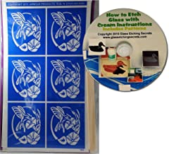 Hummingbird Glass Etching Stencils, Nectar from Flowers + Free How to Etch CD