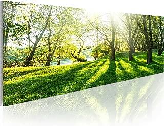 Acrylglasbild Pusteblume Natur moderne Wandbilder xxl Wohnzimmer b-B-0223-k-b