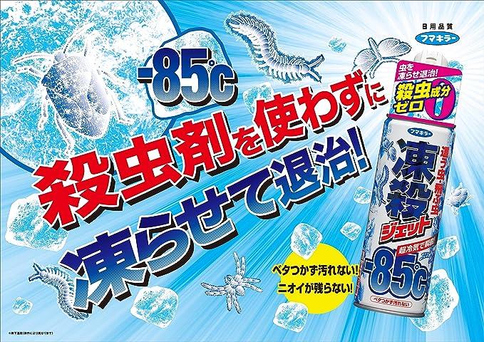 フマキラー 殺虫スプレー 凍殺ジェット 300ml | フマキラー | ドラッグストア - Amazon