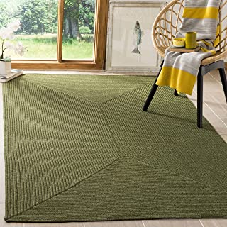Safavieh Braided Collection BRD315A Hand Woven Green Area Rug (2' x 3')